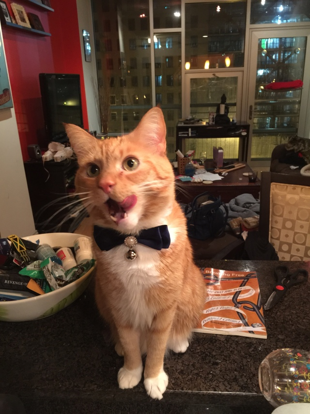 fancy charlie